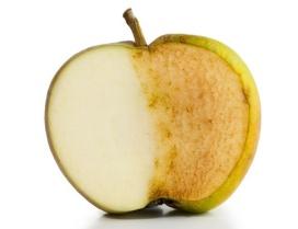 Dr Perricone inlägg 1 bild 4 äpple