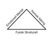 trekanttingberg