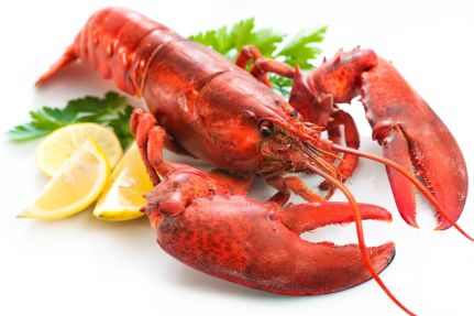 12351169 - lobster with parsley and lemon slices over white
